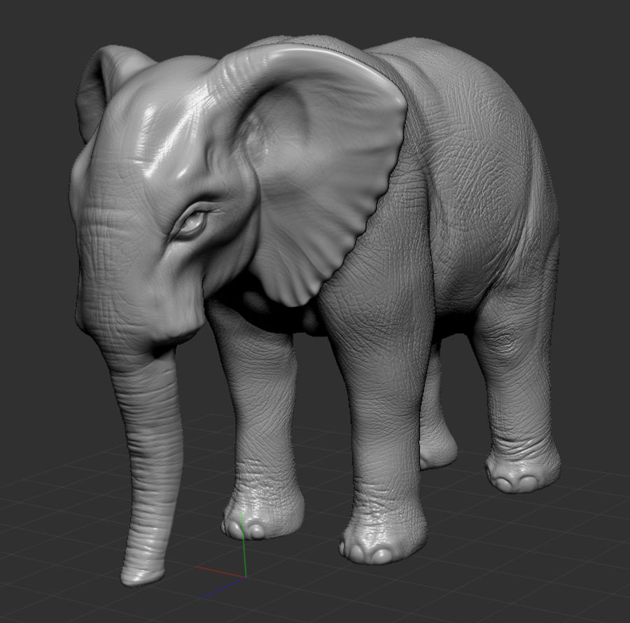 Elephant 3d realistic model royalty-free 3d model - Preview no. 5