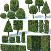 Taxus Baccata topiary Mega Collection 32 modelleri 3d model