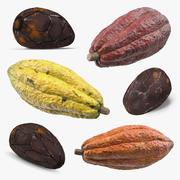 Raccolta di frutti e fagioli di cacao 3d model