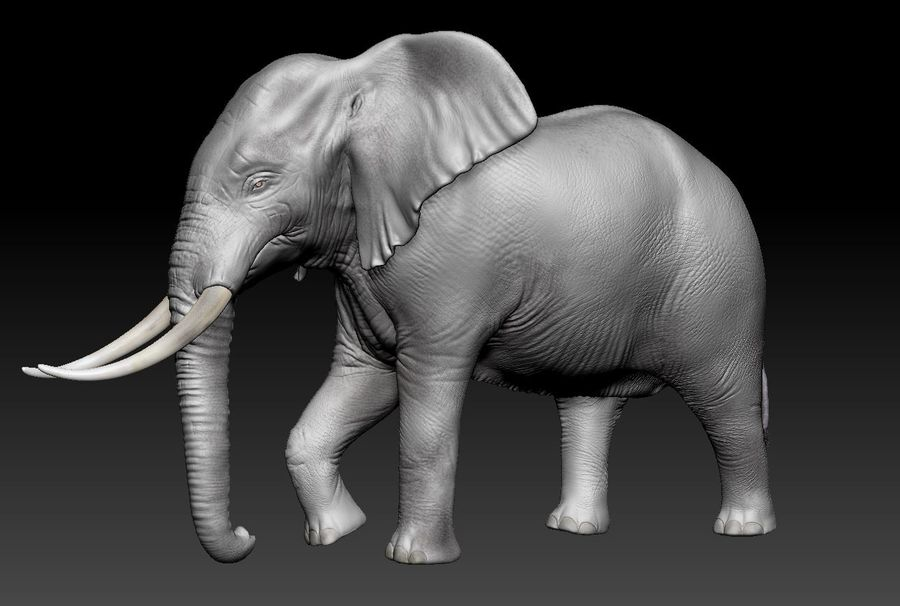 animales royalty-free modelo 3d - Preview no. 5