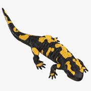 Salamander Walking 3d model