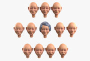 おばあちゃんの顔アニメーション用感情キット 3d model