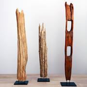 Wysokie drewno korzeniowe Natura 3d model