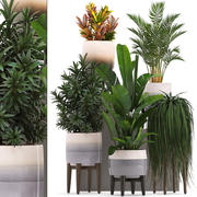 plantes en pot 3d model