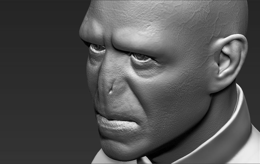 Lord Voldemort bust 3D printing ready stl obj formats royalty-free 3d model - Preview no. 23