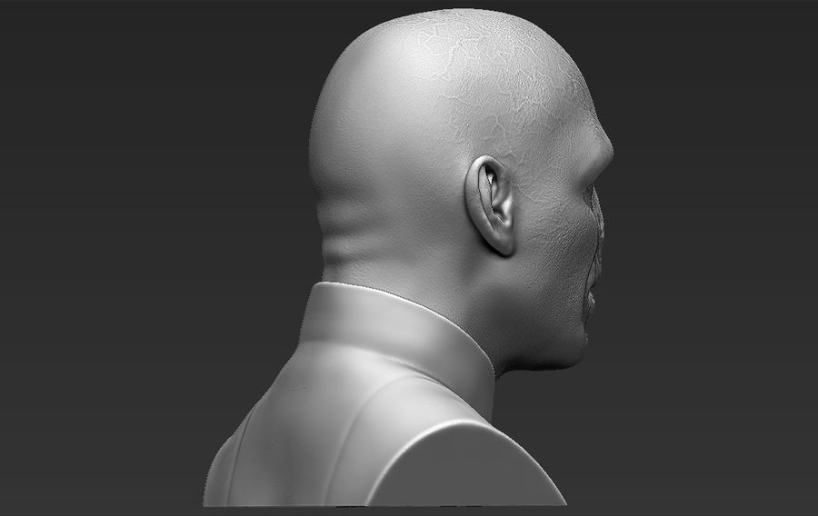 Lord Voldemort bust 3D printing ready stl obj formats royalty-free 3d model - Preview no. 10