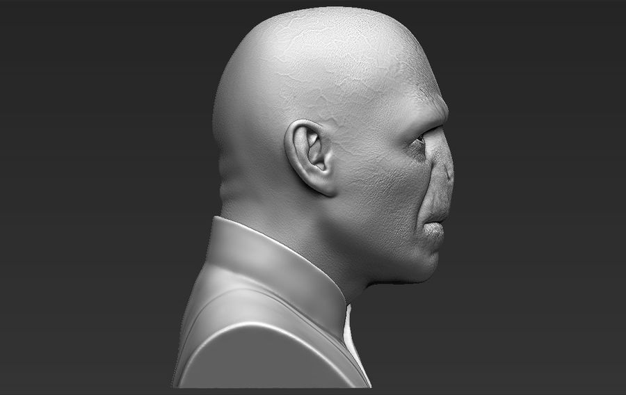 Lord Voldemort bust 3D printing ready stl obj formats royalty-free 3d model - Preview no. 11