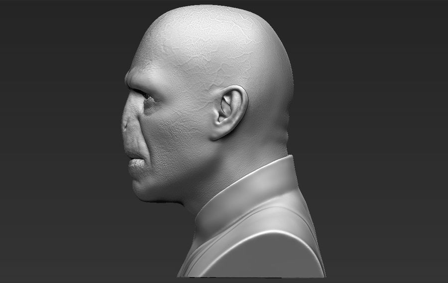 Lord Voldemort bust 3D printing ready stl obj formats royalty-free 3d model - Preview no. 5