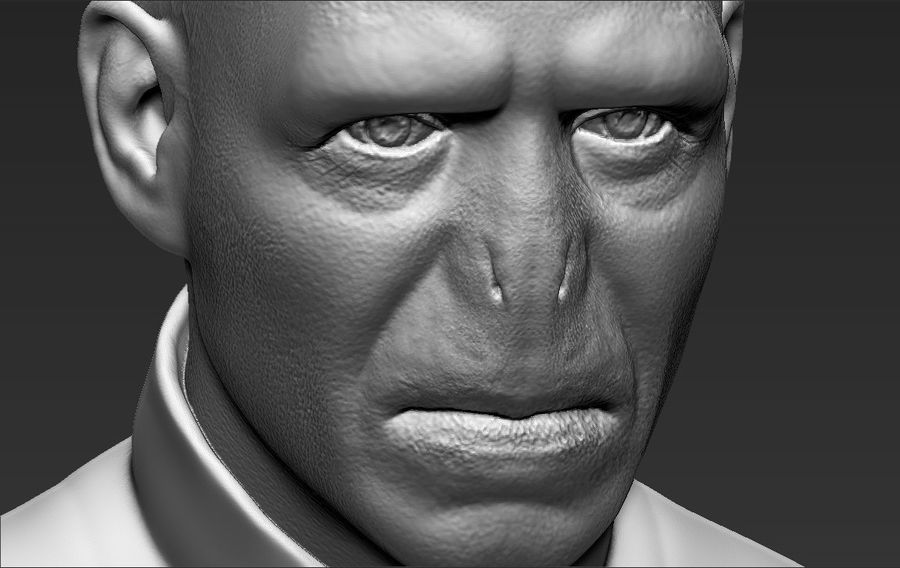Lord Voldemort bust 3D printing ready stl obj formats royalty-free 3d model - Preview no. 24