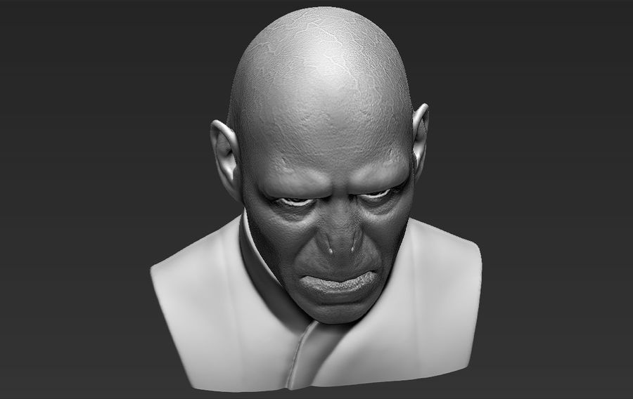 Lord Voldemort bust 3D printing ready stl obj formats royalty-free 3d model - Preview no. 17