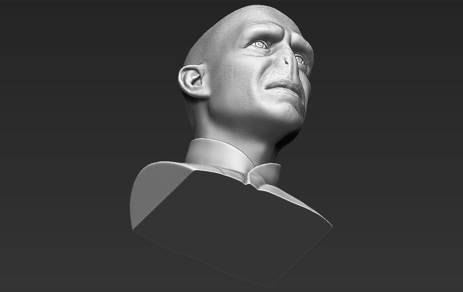 Lord Voldemort bust 3D printing ready stl obj formats royalty-free 3d model - Preview no. 28