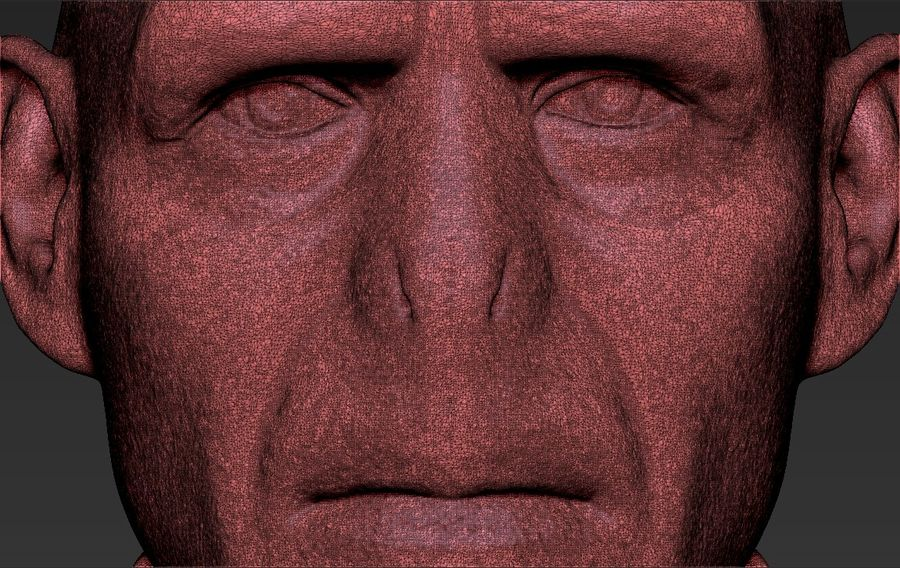Lord Voldemort bust 3D printing ready stl obj formats royalty-free 3d model - Preview no. 30