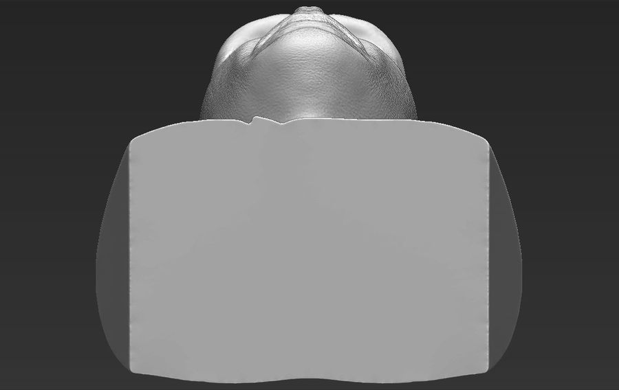 Lord Voldemort bust 3D printing ready stl obj formats royalty-free 3d model - Preview no. 29