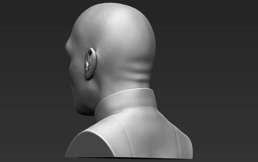 Lord Voldemort bust 3D printing ready stl obj formats royalty-free 3d model - Preview no. 6