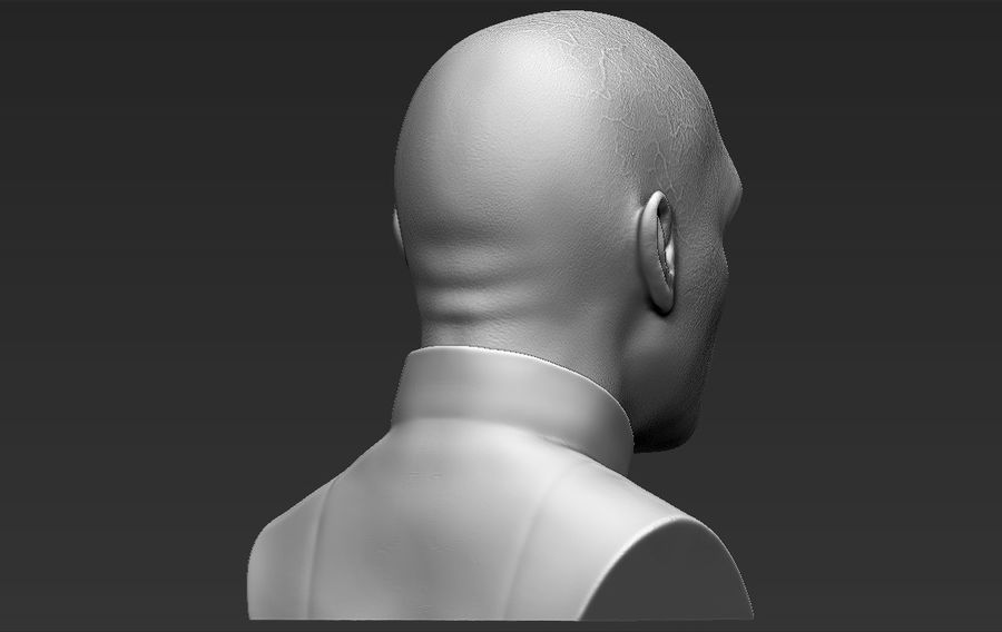 Lord Voldemort bust 3D printing ready stl obj formats royalty-free 3d model - Preview no. 9