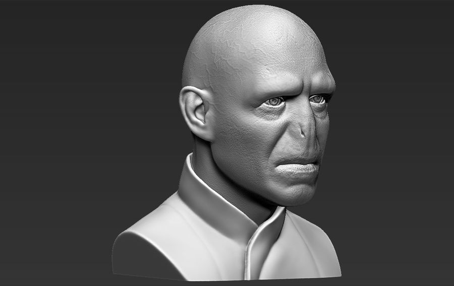 Lord Voldemort bust 3D printing ready stl obj formats royalty-free 3d model - Preview no. 12
