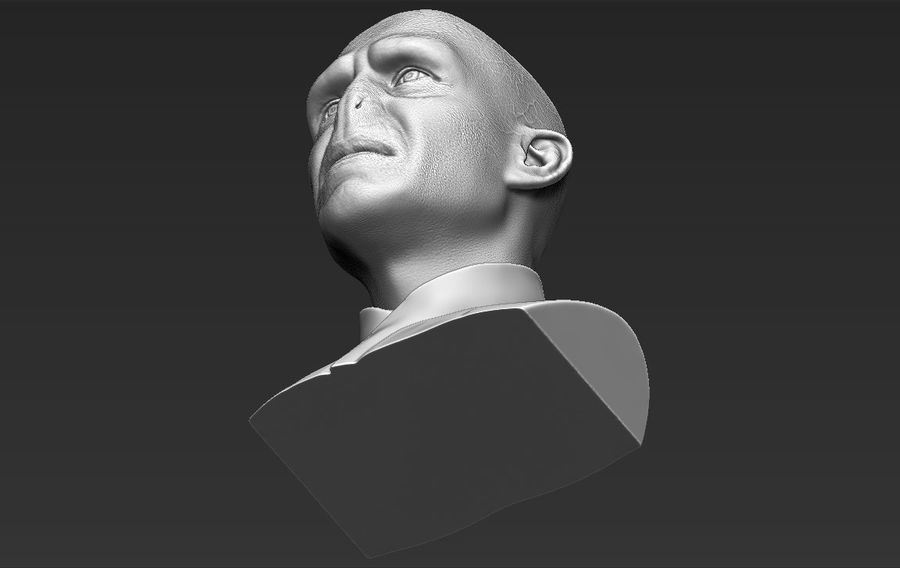 Lord Voldemort bust 3D printing ready stl obj formats royalty-free 3d model - Preview no. 27