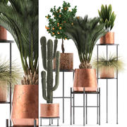 Bakır kaplarda bitki toplama 3d model