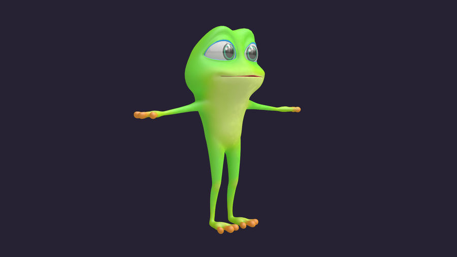 Asset - Cartoons - Character - Animals - Frog - Hight Poly royalty-free 3d model - Preview no. 8