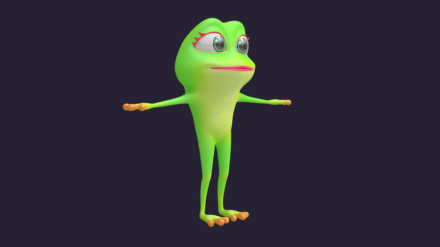 Asset - Cartoons - Character - Animals - Frog - Hight Poly royalty-free 3d model - Preview no. 3