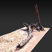 Пустынное дерево лежа 3D Скан 3d model