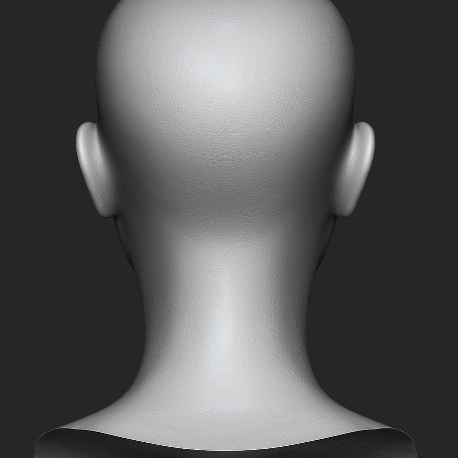 Realistic Female Head 3D Model royalty-free 3d model - Preview no. 7
