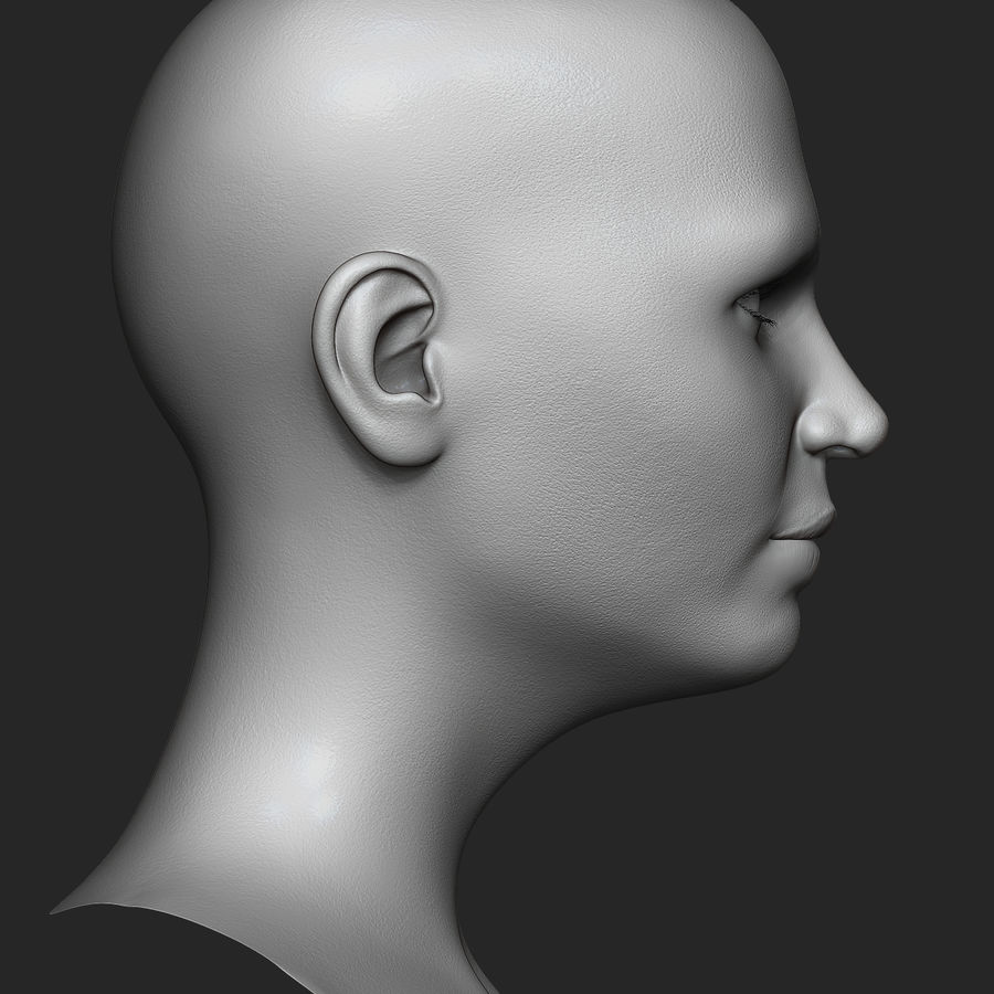 Realistic Female Head 3D Model royalty-free 3d model - Preview no. 5