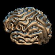 Мозг 3d model