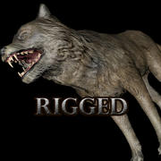Wolf Rigged 3d model