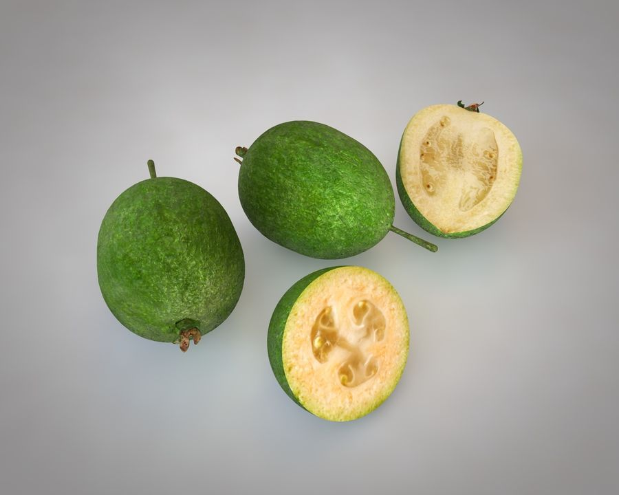 Feijoa royalty-free 3d model - Preview no. 2