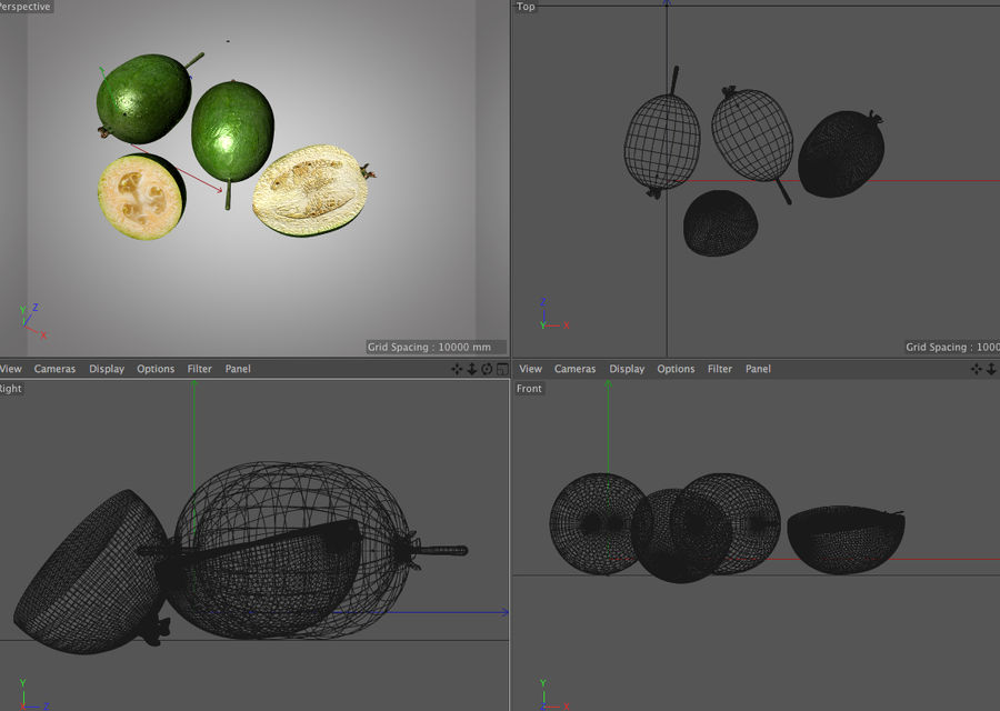 Feijoa royalty-free 3d model - Preview no. 6