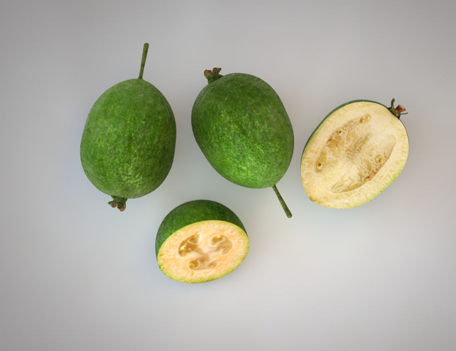 Feijoa royalty-free 3d model - Preview no. 5