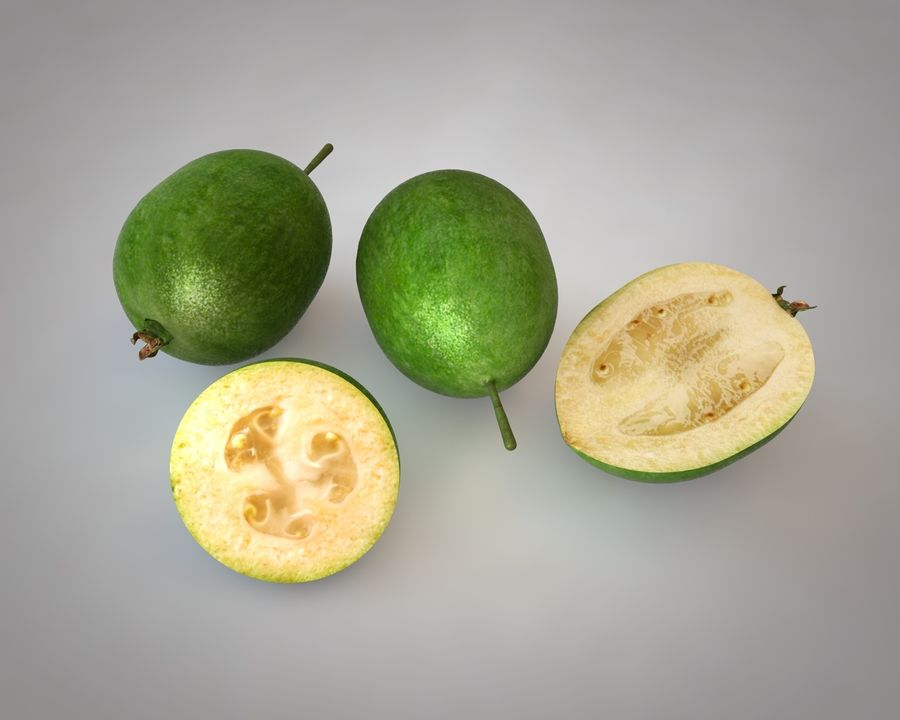 Feijoa royalty-free 3d model - Preview no. 1