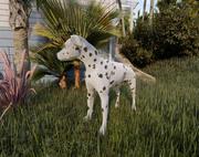 dalmatisk hund 3d model