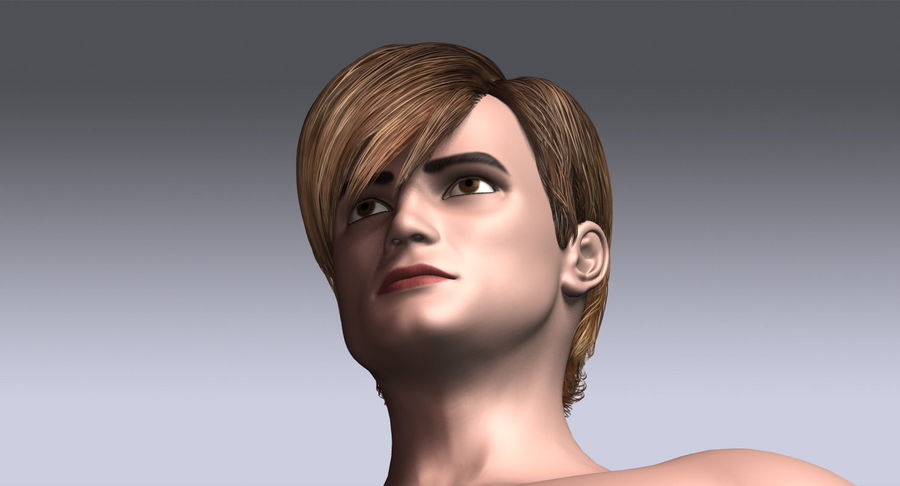 Hairstyle 21 royalty-free 3d model - Preview no. 13