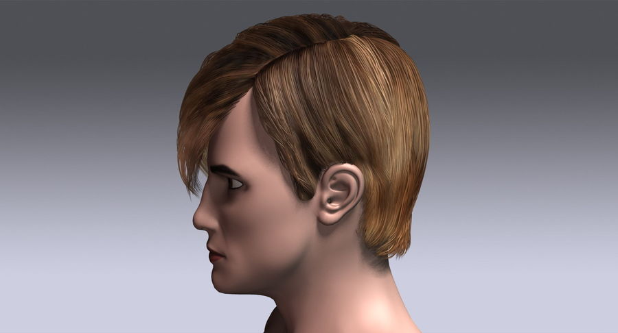 Hairstyle 21 royalty-free 3d model - Preview no. 11