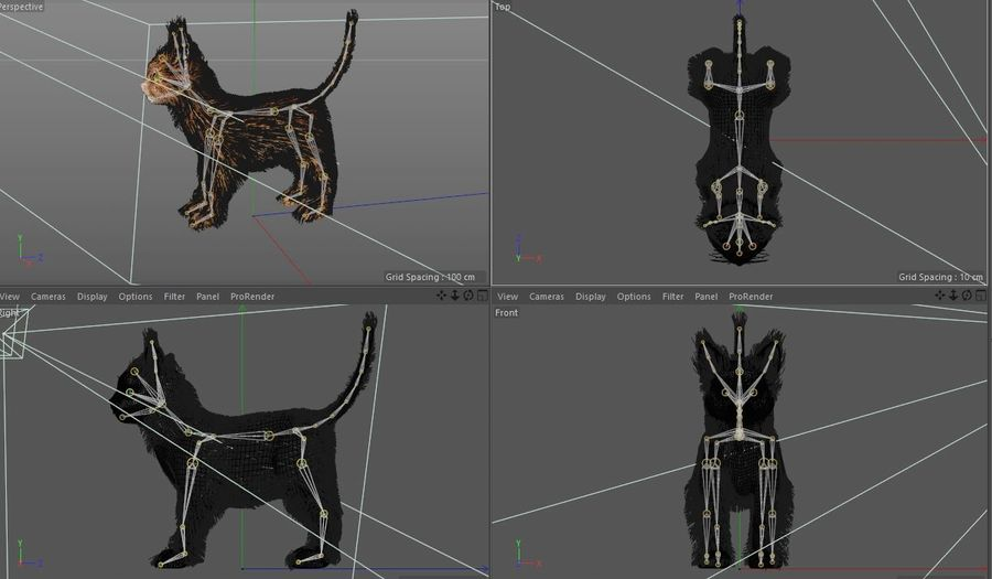 Cat royalty-free 3d model - Preview no. 14
