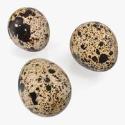 Huevos de codorniz Modelos 3D modelo 3d