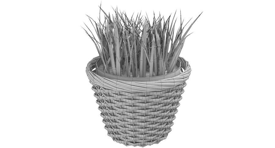 Plante en pot royalty-free 3d model - Preview no. 10
