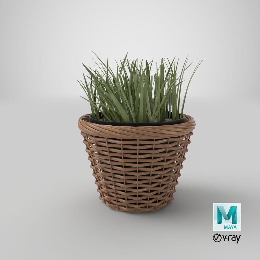Plante en pot royalty-free 3d model - Preview no. 16