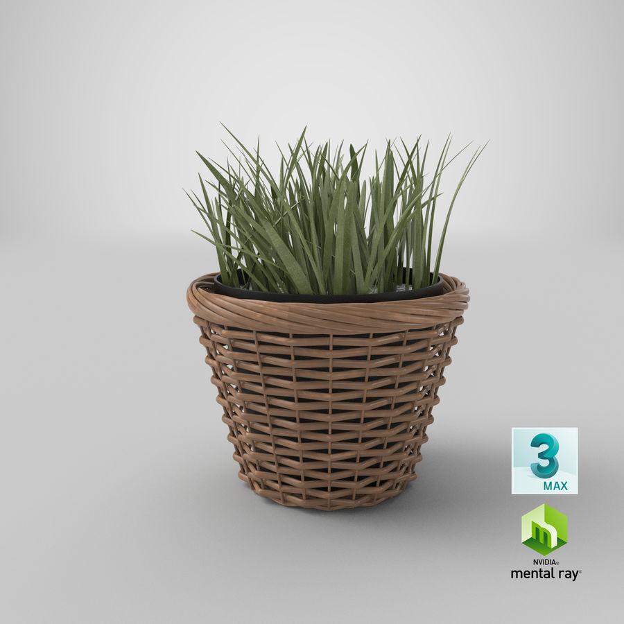 Plante en pot royalty-free 3d model - Preview no. 19