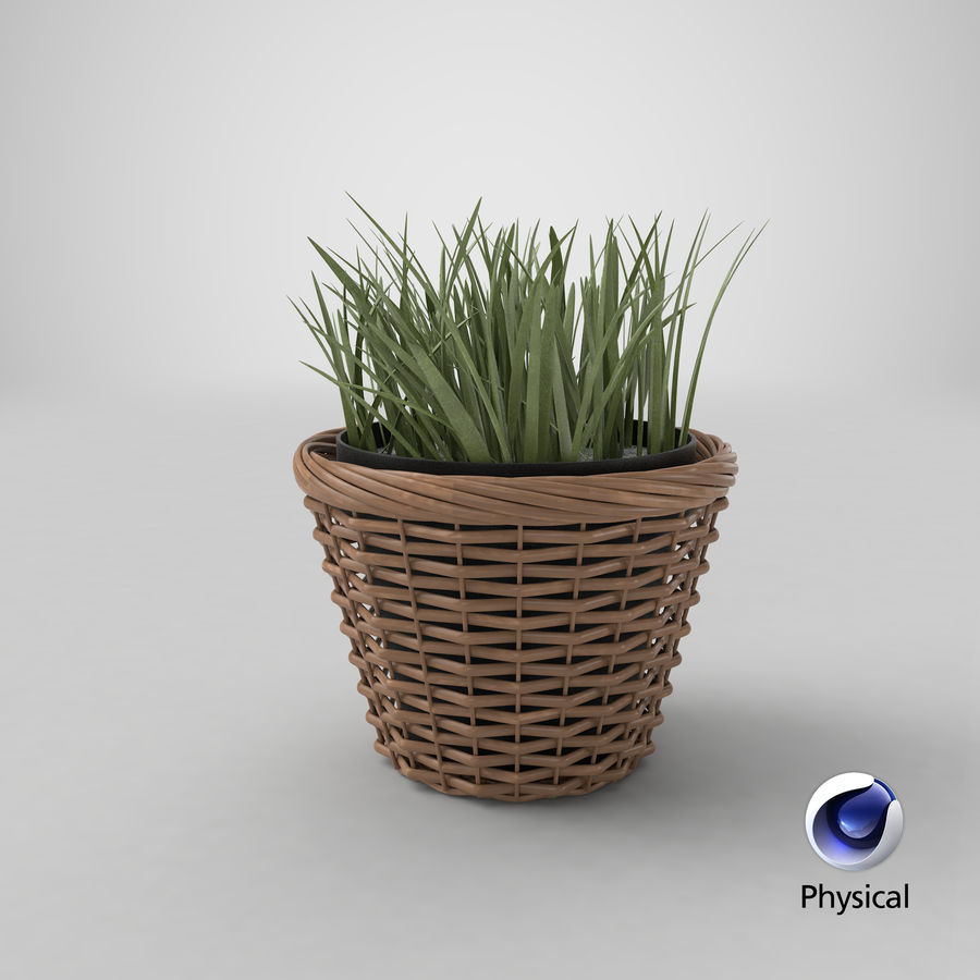 Pflanze im Topf royalty-free 3d model - Preview no. 36