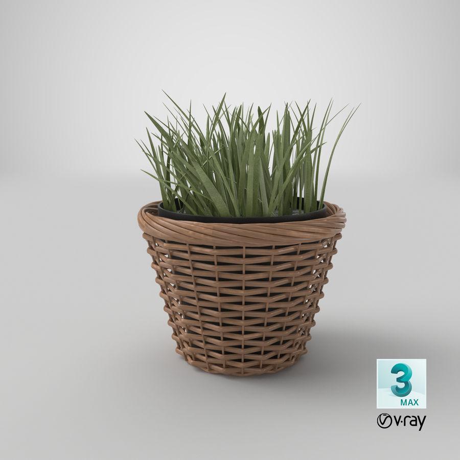 Plante en pot royalty-free 3d model - Preview no. 18
