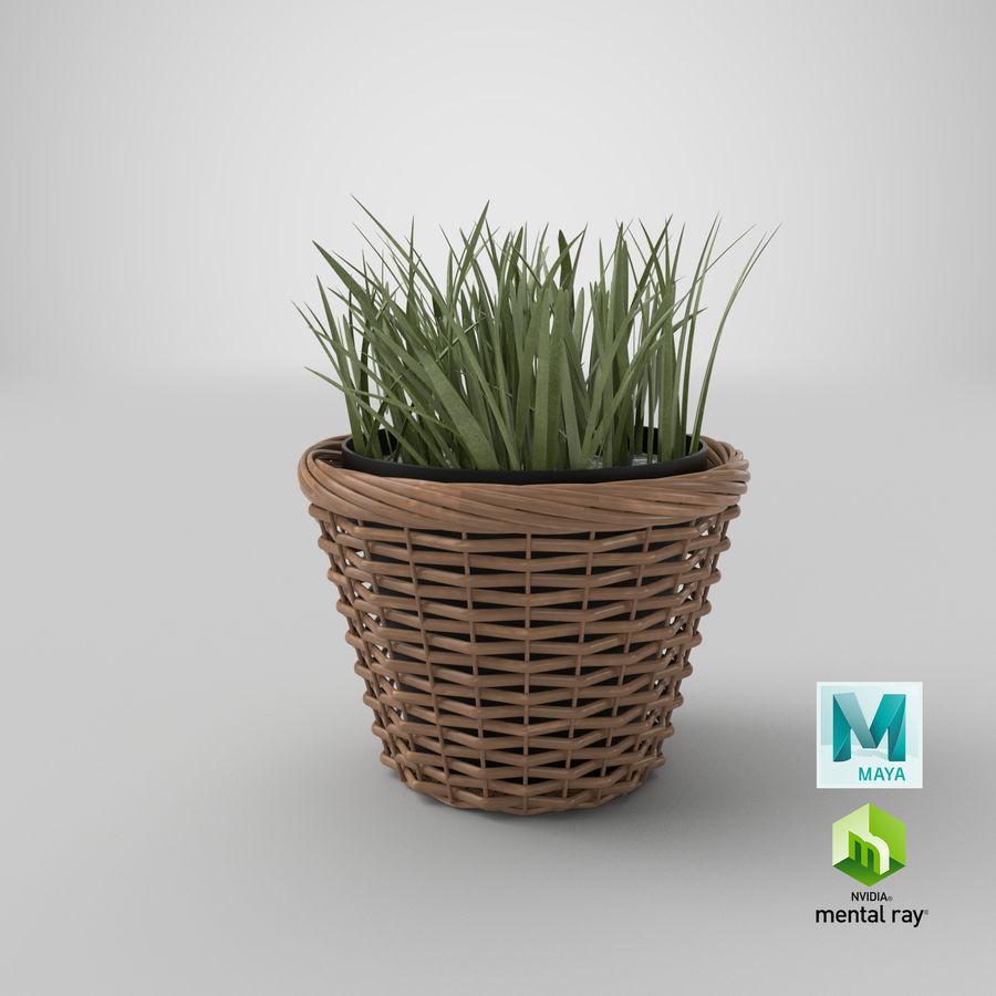 Plante en pot royalty-free 3d model - Preview no. 17