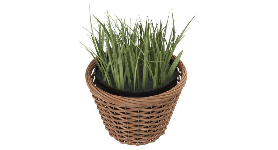 Plante en pot royalty-free 3d model - Preview no. 9