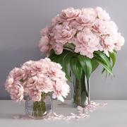 Elegant pink peonies in 2 vases 3d model