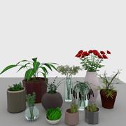 Interior Design-Elemente Pflanzen gesetzt 3d model