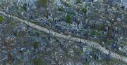 墓地環境 3d model