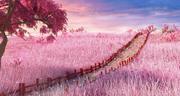 Japanese Meadow Path 3d model
