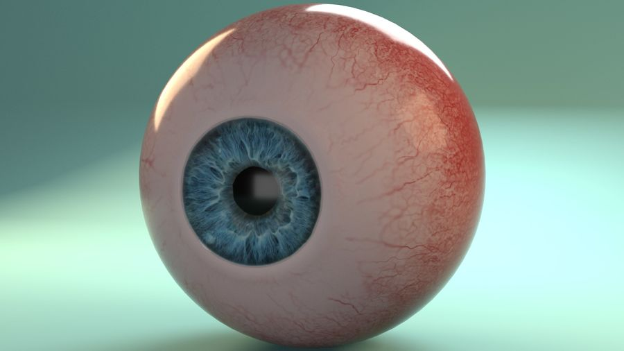 Photorealistic Human Eye_Animated royalty-free 3d model - Preview no. 2